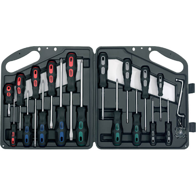 Draper Expert 20 Piece Screwdriver Set