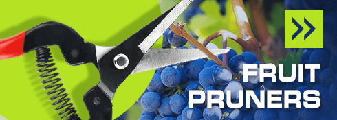 Fruit Pruners