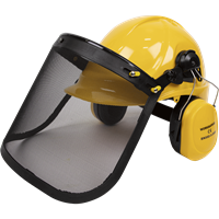 Sealey Forestry Safety Helmet Kit