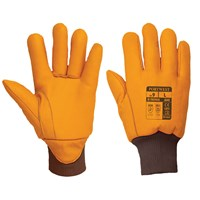 Portwest Antarctica Insulatex Lined Gloves