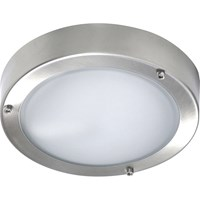 Byron Stainless Steel Wall or Ceiling Outdoor Light