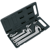 Sealey 11 Piece Adjustable Hook and Pin Spanner Set
