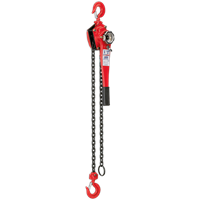 Sealey Chain Block Lifting Hoist